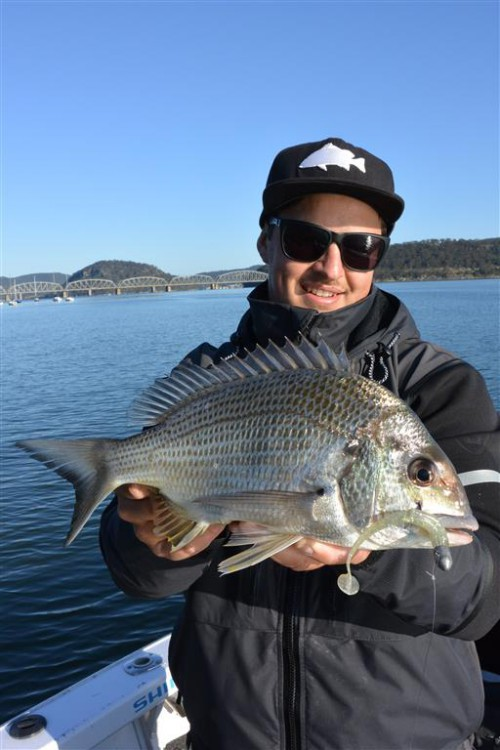 bream fishing charters