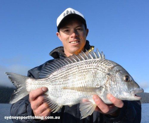 bream on lures