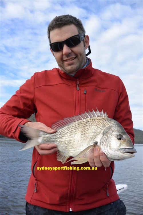 hawkesbury river bream on lures