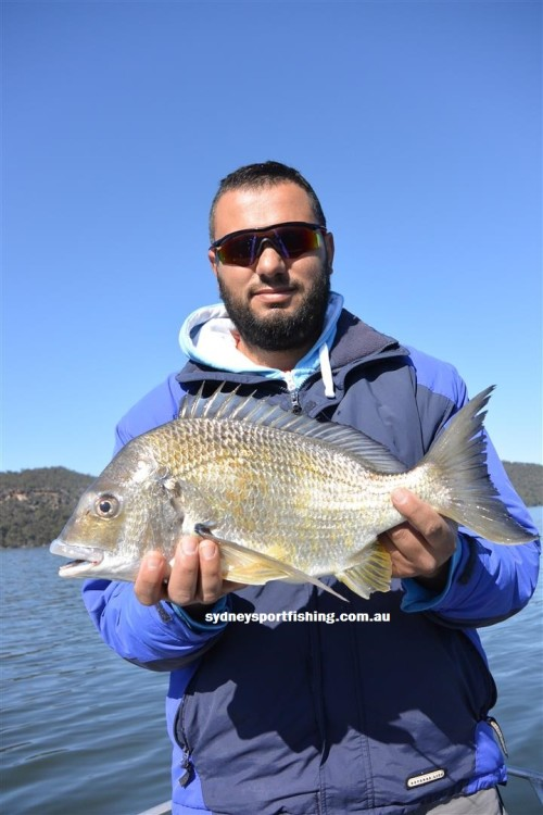 record bream