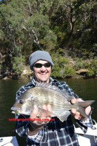 There are many ways to target bream but none more effective than soft plastics for big blue nose bruisers like this one.