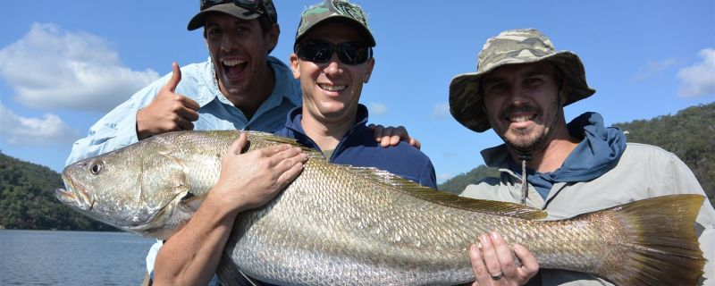 Sydney Fishing Charters & Tuition