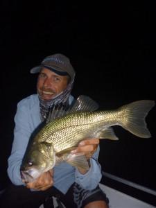 Dan selby Bass