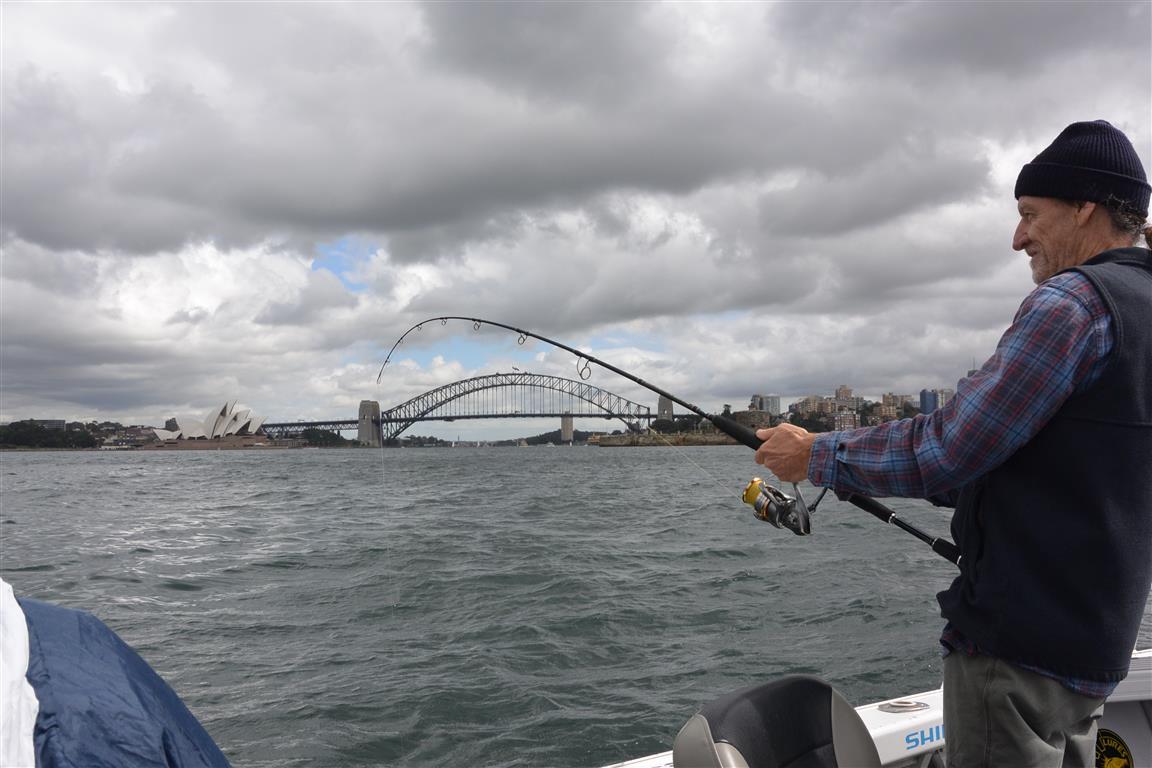 harbour-hook-up