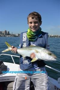 Brady's first sydney Kingfish at age 11!!