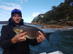 Big Blackfish like this will test your tackle and your angling skills!